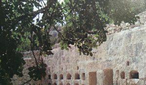 Romeinse bijenstal op Malta, aardappelteler voor Jansen-Dongen